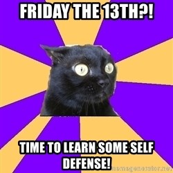 Anxiety Cat - Friday the 13th?! Time to learn some self defense!