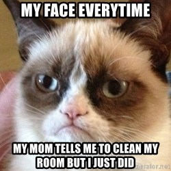Angry Cat Meme - MY FACE EVERYTIME MY MOM TELLS ME TO CLEAN MY ROOM BUT I JUST DID