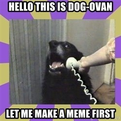 Yes, this is dog! - Hello this is dog-ovan let me make a meme first