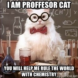 Chemistry Cat - i am proffesor cat  you will help me rule the world with chemistry