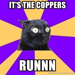 Anxiety Cat - It's THE COPPERS RUNNN