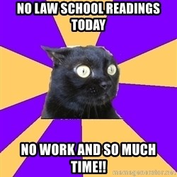 Anxiety Cat - No law school readings today No work and so much time!!