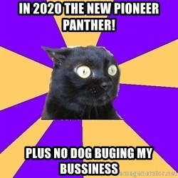 Anxiety Cat - In 2020 The new Pioneer Panther! Plus No Dog buging my bussiness
