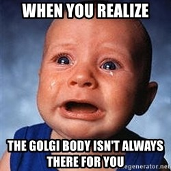 Crying Baby - When you realize the golgi body isn't always there for you