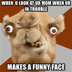 Crazy Camel lol - When  u look at ur mom when ur in trouble makes a funny face
