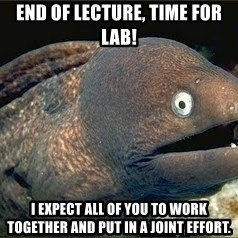 Bad Joke Eel v2.0 - End of lecture, time for lab! I expect all of you to work together and put in a joint effort.
