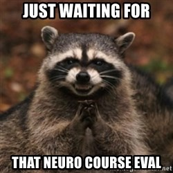evil raccoon - Just waiting for That neuro course eval