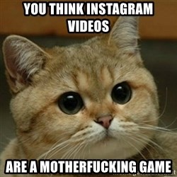 Do you think this is a motherfucking game? - You think instagram videos Are a motherfucking game
