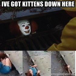 Pennywise in sewer - ive got kittens down here