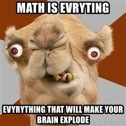 Crazy Camel lol - math is evryting EVYRYTHING THAT WILL MAKE YOUR BRAIN EXPLODE