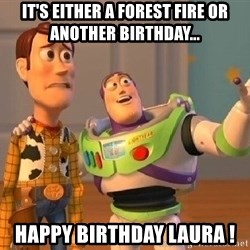 Consequences Toy Story - It's either a forest fire or another birthday... happy birthday laura !
