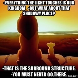 simba mufasa - -Everything the light touches is our kingdom    -But what about that shadowy place? -That is the surround structure.        -You must never go there.