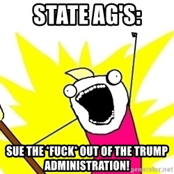 X ALL THE THINGS - state ag's: sue the *fuck* out of the trump administration!