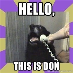 Yes, this is dog! - Hello, This is don