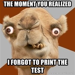 Crazy Camel lol - the moment you realized I forgot to print the test