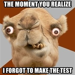 Crazy Camel lol - the moment you realize i forgot to make the test