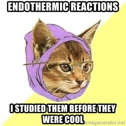 Hipster Kitty - endothermic reactions i studied them before they were cool
