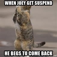 Begging Cat - when joey get suspend he begs to come back