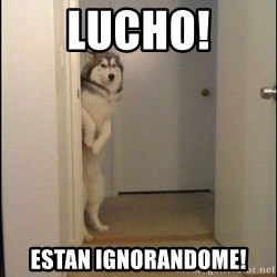Lucho - lucho! estan ignorandome!