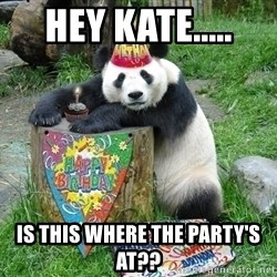 Happy Birthday Panda - hey kate..... is this where the party's at??