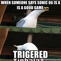 el ganso x4 inhala - When someone says sonic 06 is a  is a good game. Trigered