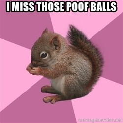 Shipper Squirrel - I miss those poof balls