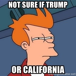 Futurama Fry - not sure if Trump or California