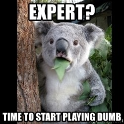 Koala can't believe it - Expert? Time to start playing dumb
