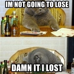 Poker Cat - im not going to lose damn it i lost