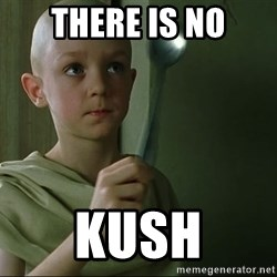 There is no spoon - There is no Kush