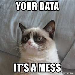 Grumpy cat good - Your data It's a mess