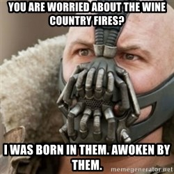 Bane - You are worried about the wine country fires? I was bOrn in them. Awoken by them.