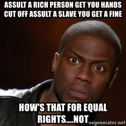 kevin hart nigga - Assult a rich person get you hands cut off assult a slave you get a fine How's that for eQUal rights....not