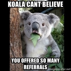Koala can't believe it - koala cant believe you offered so many referrals