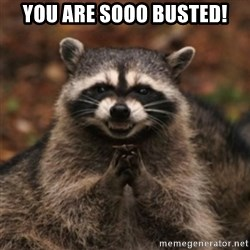 evil raccoon - you are sooo busted!