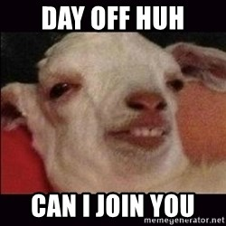10 goat - Day off huh Can i join you
