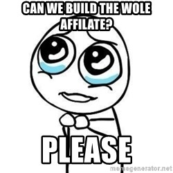 Please guy - Can we build the wole affilate? please