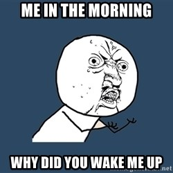 Y U No - Me in the morning why did you wake me up