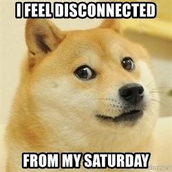 Dogeeeee - i feel disconnected from my saturday