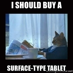 i should buy a boat cat - I should BUY a SURFACE-type tablet