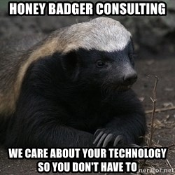 Honey Badger - Honey badger consulting we care about your Technology       so you don't have to