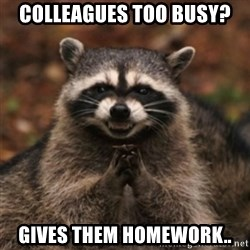 evil raccoon - Colleagues too busy? gives them homework..