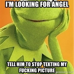 Kermit the frog - I'm looking for angel Tell him to stop texting my fucking picture
