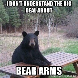 Patient Bear - I don't understand the big deal about bear arms