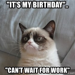 """Grumpy cat good - """"it's my birthday"""".. """"Can't wait for work"""""""