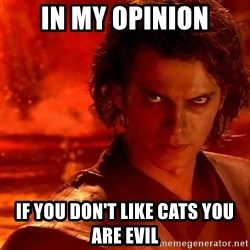 Anakin Skywalker - In my opinion If you don't like cats you are evil