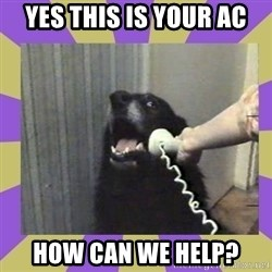 Yes, this is dog! - Yes this is your ac how can we help?