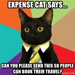 Business Cat - Expense Cat Says... can you please send this so people can book their travel?