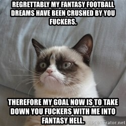 Grumpy cat good - Regrettably my Fantasy Football dreams have been crushed by you Fuckers. Therefore my goal now is to take down you fuckers with me into fantasy hell.