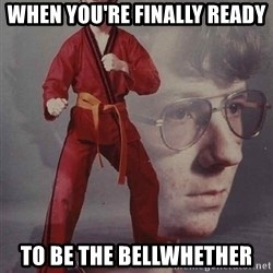 PTSD Karate Kyle - when you're finally ready to be the bellwhether